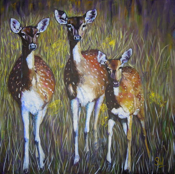 Painting - Deer On Guard by Shirley Wellstead
