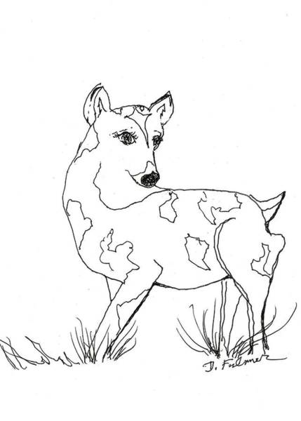 Drawing - Deer One by Denise F Fulmer
