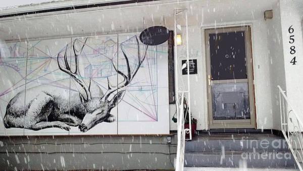 Photograph - Deer Resting @ Deer Lake Gallery by Bill Thomson