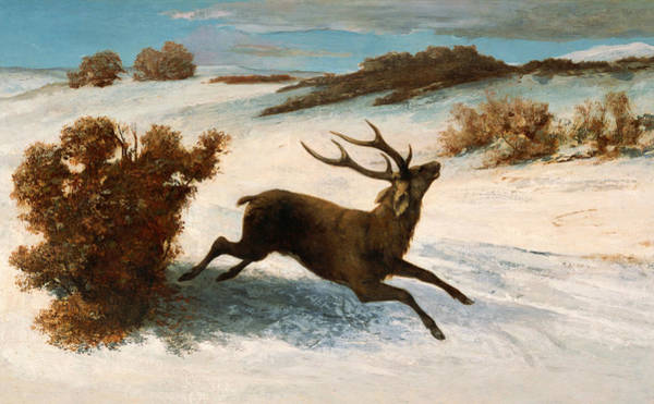 Painting - Deer Running In The Snow by Gustave Courbet