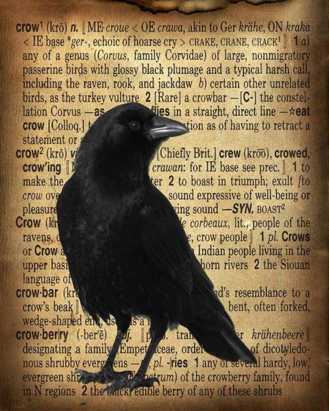 Definition Digital Art - Defining Crow by Gothicrow Images