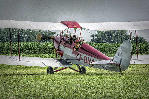Photograph - Dehavilland Dh-82c Tiger Moth by Guy Whiteley