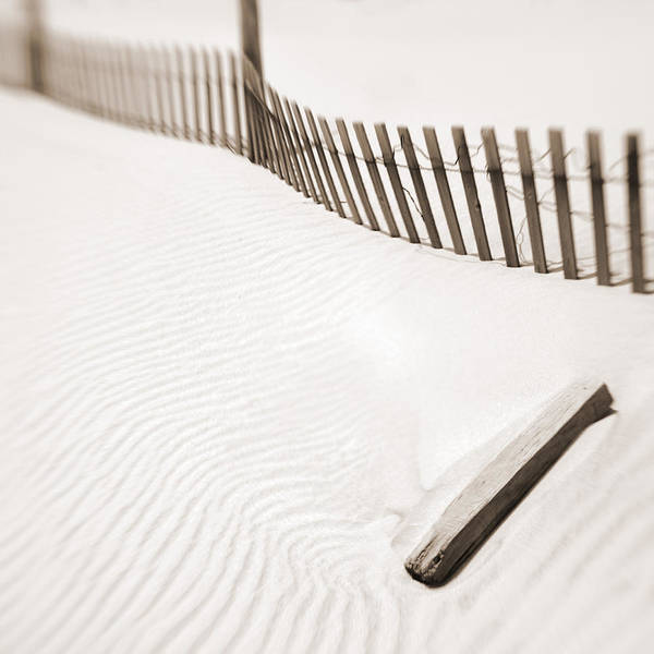 Delaware Dunes Number Five Art Print