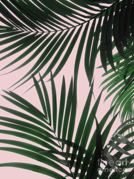 Delicate Jungle Theme Art Print
