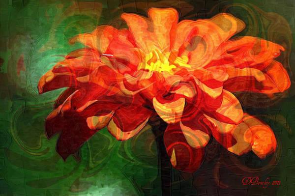 Photograph - Delicate Orange Flower by Donna Bentley