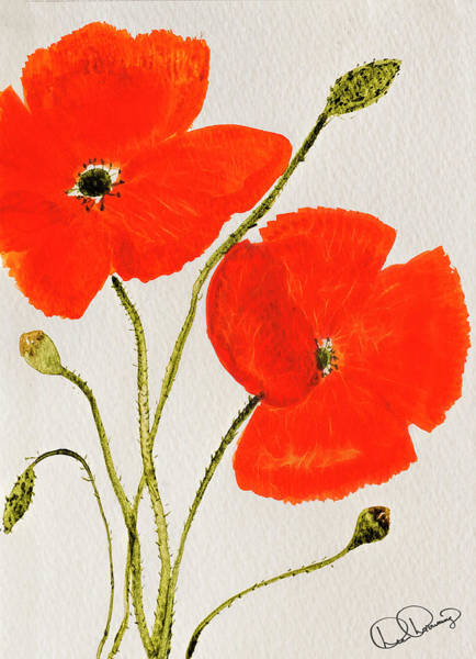 Painting - Delightful Poppies by Dee Browning