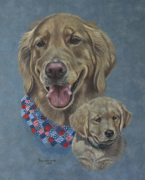 Golden Retriever Drawing - Della Then And Now by Debbie Stonebraker