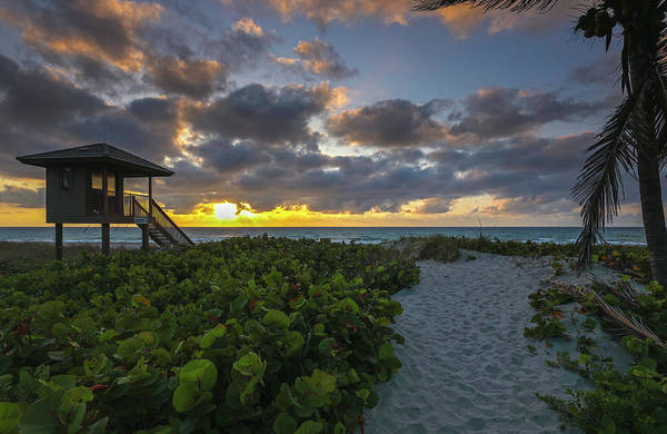 Photograph - Delray Beach Lifeguard Tower by Juergen Roth