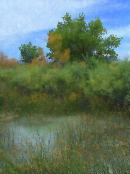 Digital Art - Delta Marsh by David King