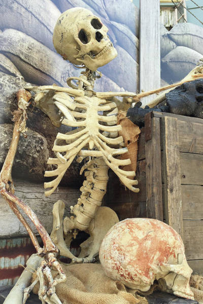 Life Or Death Photograph - Dem Bones by Art Block Collections