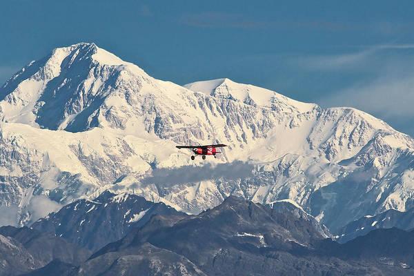 Photograph - Denali Air by Ed Boudreau