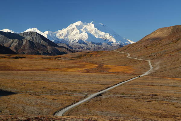 Photograph - Denali Is Out by Steve Wolfe