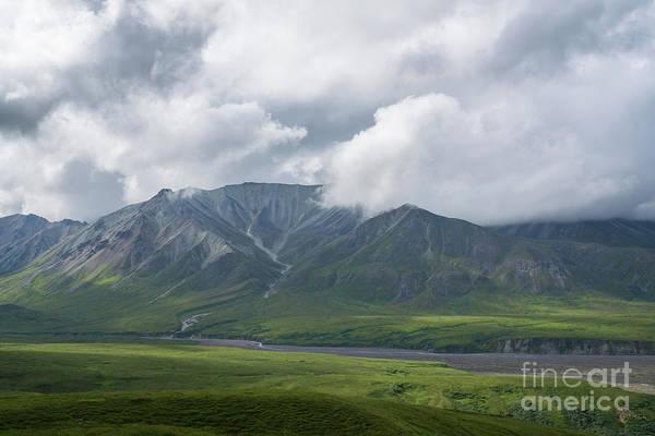 Photograph - Denali National Park by Michael Ver Sprill