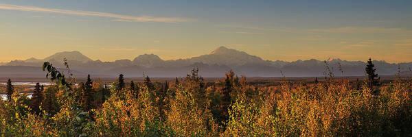 Photograph - Denali Range Summer by Ed Boudreau