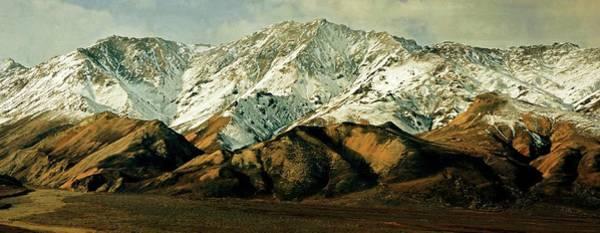Photograph - Denali Road 8 by Marty Koch