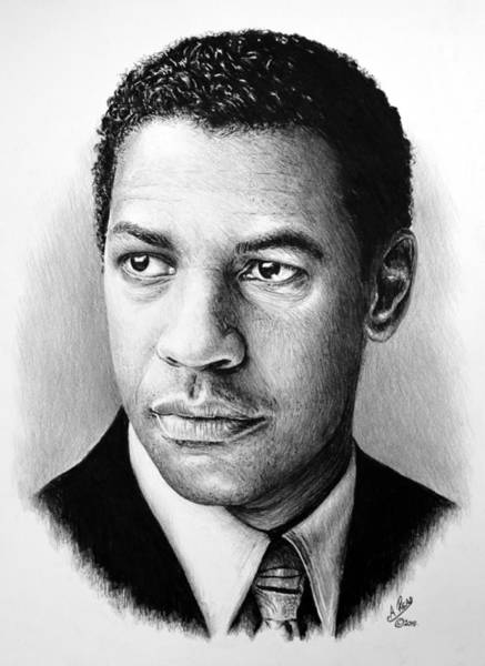Handsome Drawing - Denzel Washington by Andrew Read
