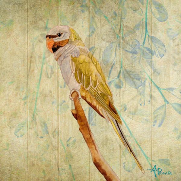 Painting - Derbyan Parakeet I by Angeles M Pomata