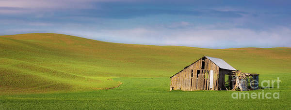 Wall Art - Photograph - Derelict Barn In The Palouse by Jerry Fornarotto