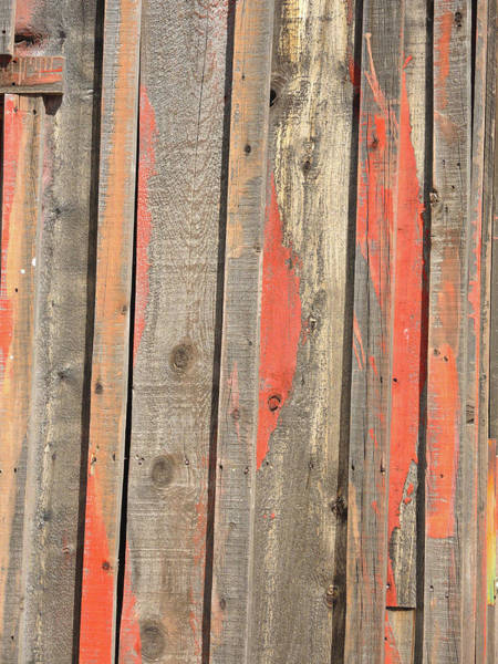 Photograph - Dereliction Of Doorway by Lynda Lehmann