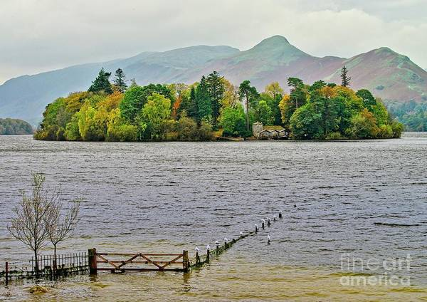 Photograph - Derwent Isle, Lake District by Martyn Arnold