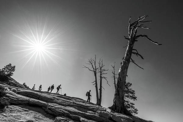 Sentinel Photograph - Descent From Sentinel Dome by Davorin Mance