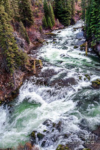 Photograph - Deschutes River by David Millenheft