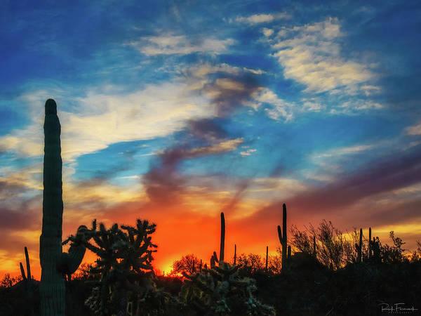 Photograph - Desert Ablaze by Rick Furmanek