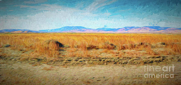 Digital Art - Desert Amber Waves by Joe Lach