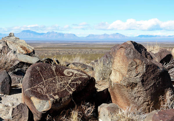 Photograph - Desert Art by Nicholas Blackwell