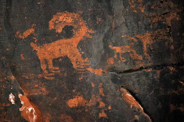 Photograph - Desert Bighorn Sheep Petroglyph Zion by Kyle Hanson