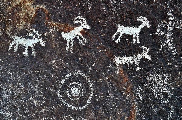 Photograph - Desert Bighorn Sheep Petroglyphs by Kyle Hanson