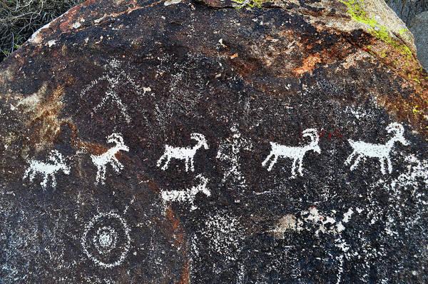 Photograph - Desert Bighorn Sheep Petroglyphs Lake Mead by Kyle Hanson