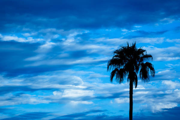 Darkside Photograph - Desert Blues by Nick Mattea