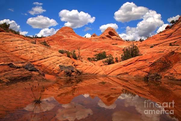 Photograph - Desert Canyon Reflections by Adam Jewell