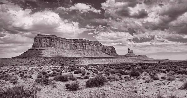 Photograph - Desert Clarity by Leda Robertson