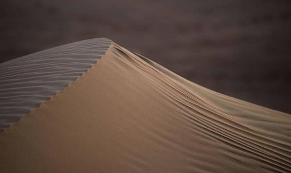 Photograph - Desert Dawn by Alex Lapidus