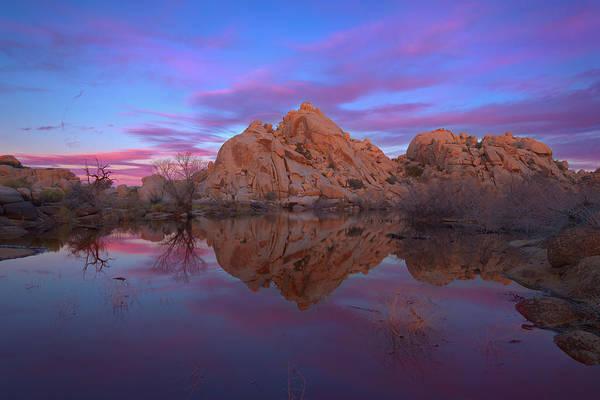 Wall Art - Photograph - Desert Dawn by Brian Knott Photography