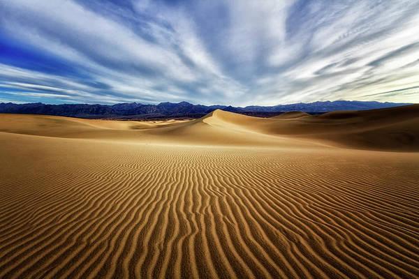 Wall Art - Photograph - Desert Dune Drama  by Nicki Frates