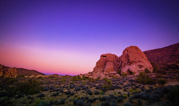 Photograph - Desert Grape Rock by T Brian Jones