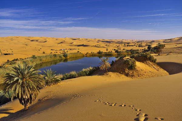 Photograph - Desert Lake by Ivan Slosar