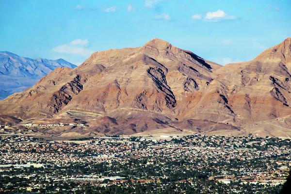Photograph - Desert Life by Susan Molnar