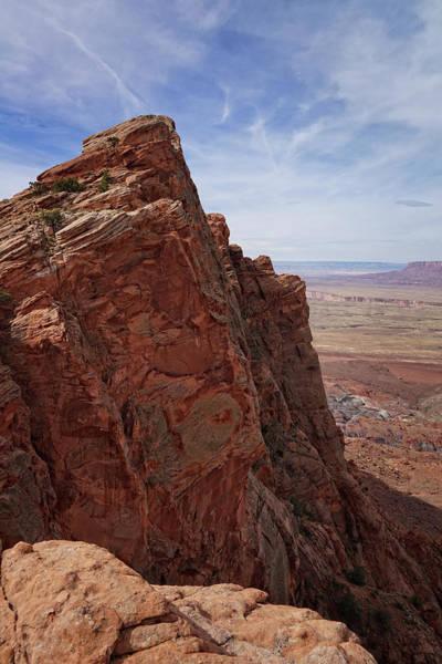 Photograph - Desert Magnificence by Leda Robertson