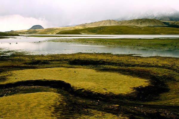 Arica Photograph - Desert Pathways by Caroline Walker