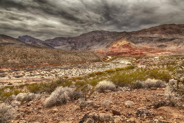 Photograph - Desert Peace by David Millenheft