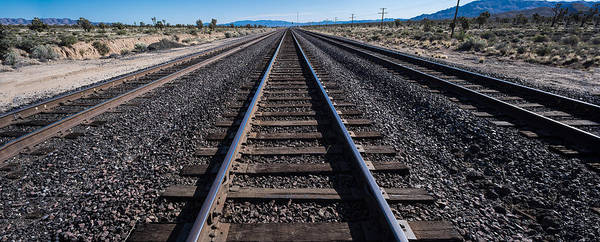 Wall Art - Photograph - Desert Rails by Steve Gadomski