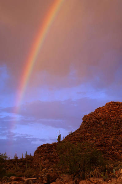 Photograph - Desert Rainbow by Jill Reger