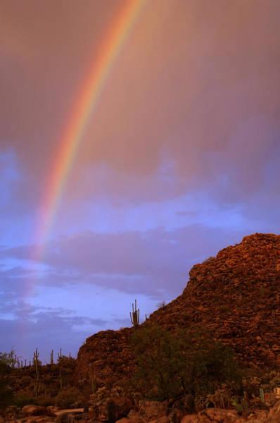 Photograph - Desert Rainbow by Jill Reger