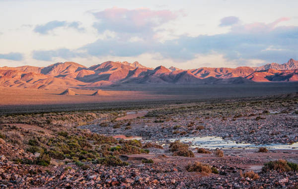Photograph - Desert River Sunset by Rick Wicker