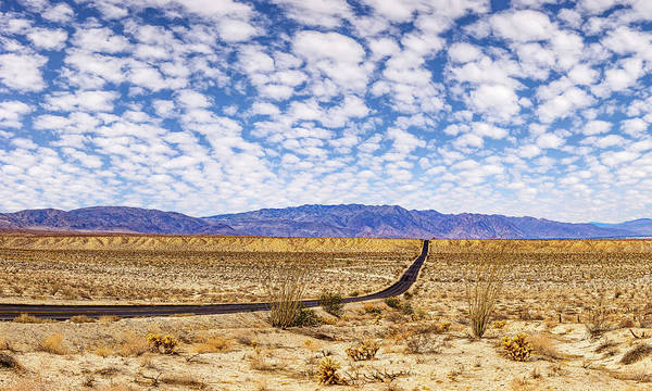 Photograph - Desert Road 1 by Peter Tellone