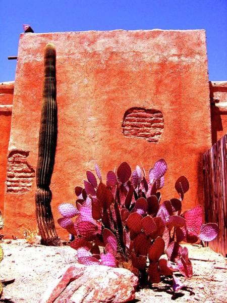 Desert Solace Art Print